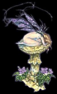 feeviolette